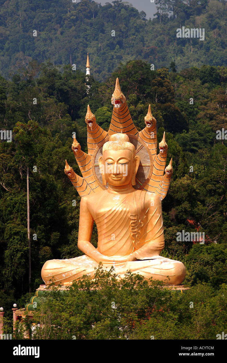 Giant Buddha Bang Riang Buddhism Thailand Travel