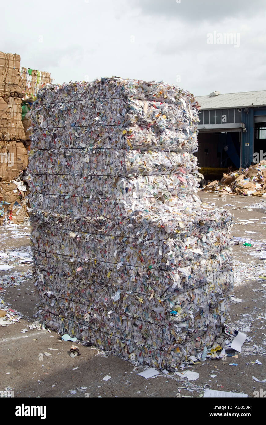 Bale of shredded paper for recycling England UK - Stock Image
