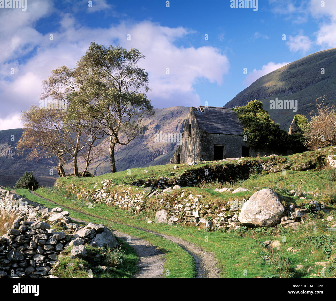 abandoned old cottage sits forlorn under irelands highest mountain Stock Photo