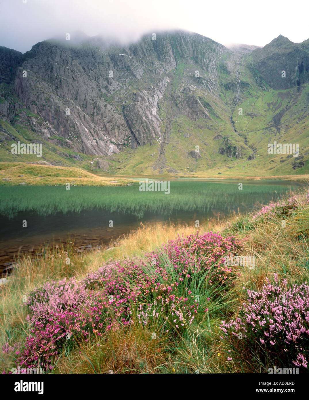 Llyn Idwal and the Glyders. Snowdonia National Park. Wales Stock Photo