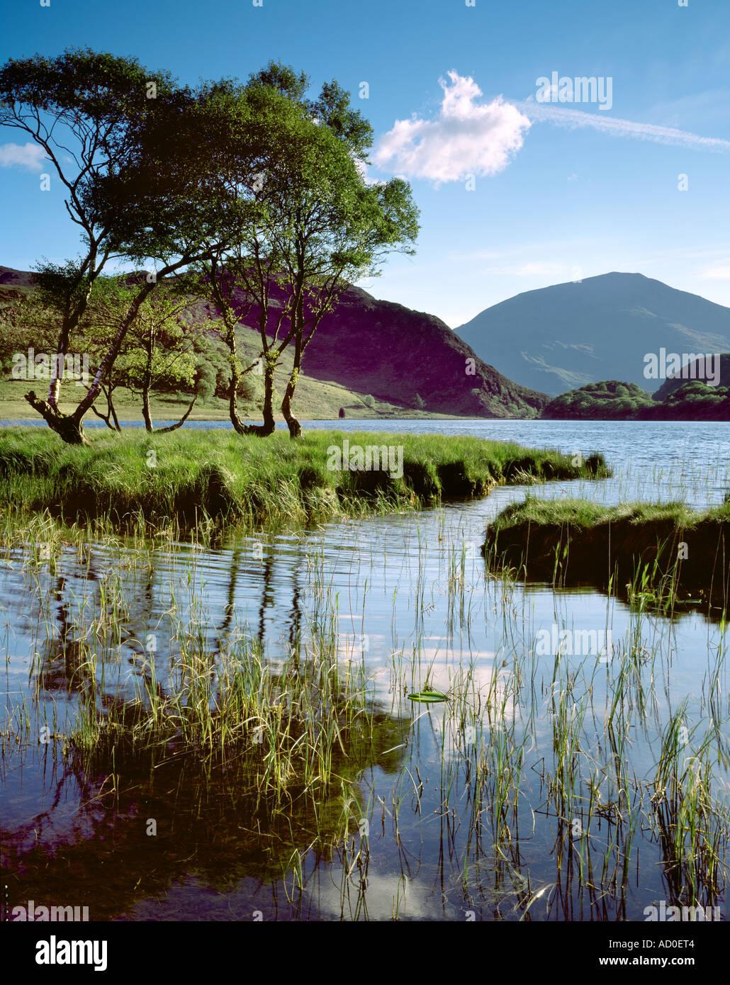 View across Llyn Dinas to Moel Hebog. Snowdonia National Park. Wales Stock Photo