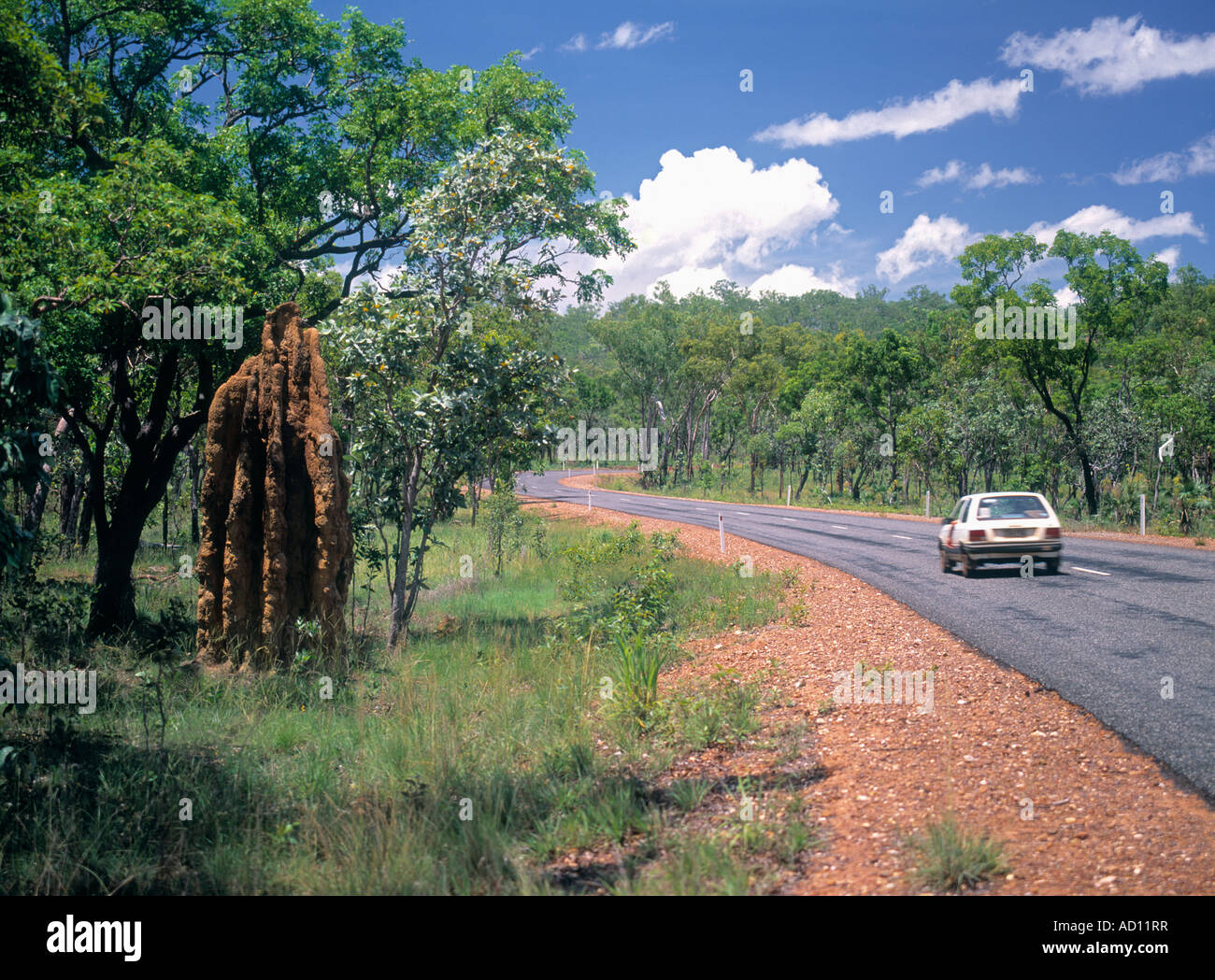 Road, Litchfield National Park, Northern Territory, Australia - Stock Image