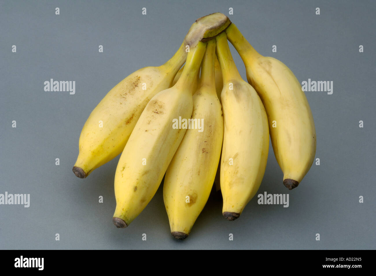 Five Photographs Of Banana In Seach Of >> Hma71717 Five Pieces Yellow Color Banana With Gray Background Stock