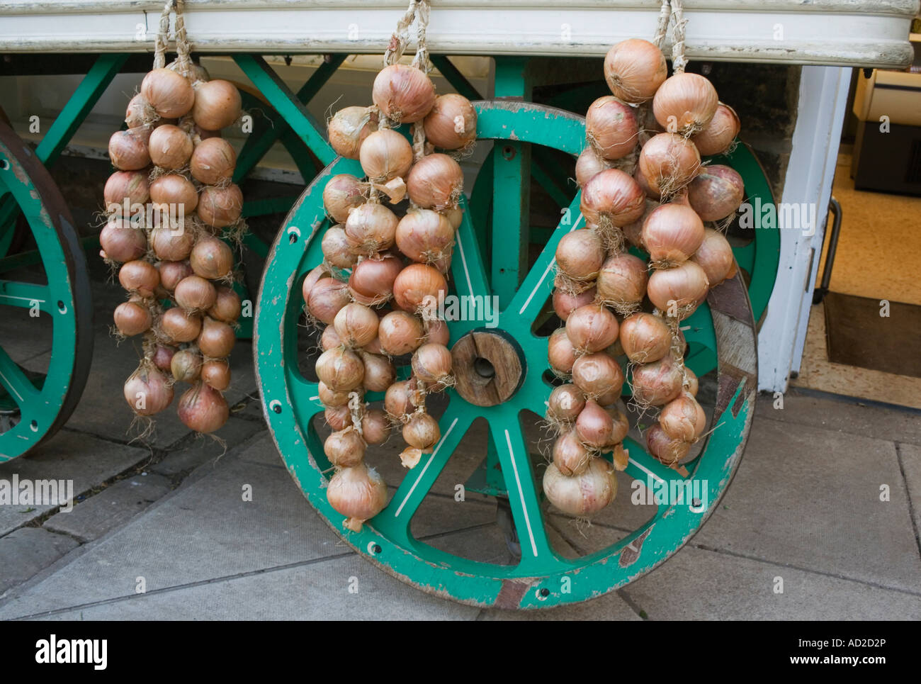 Strings of onions on sale outside grocers shop - Stock Image