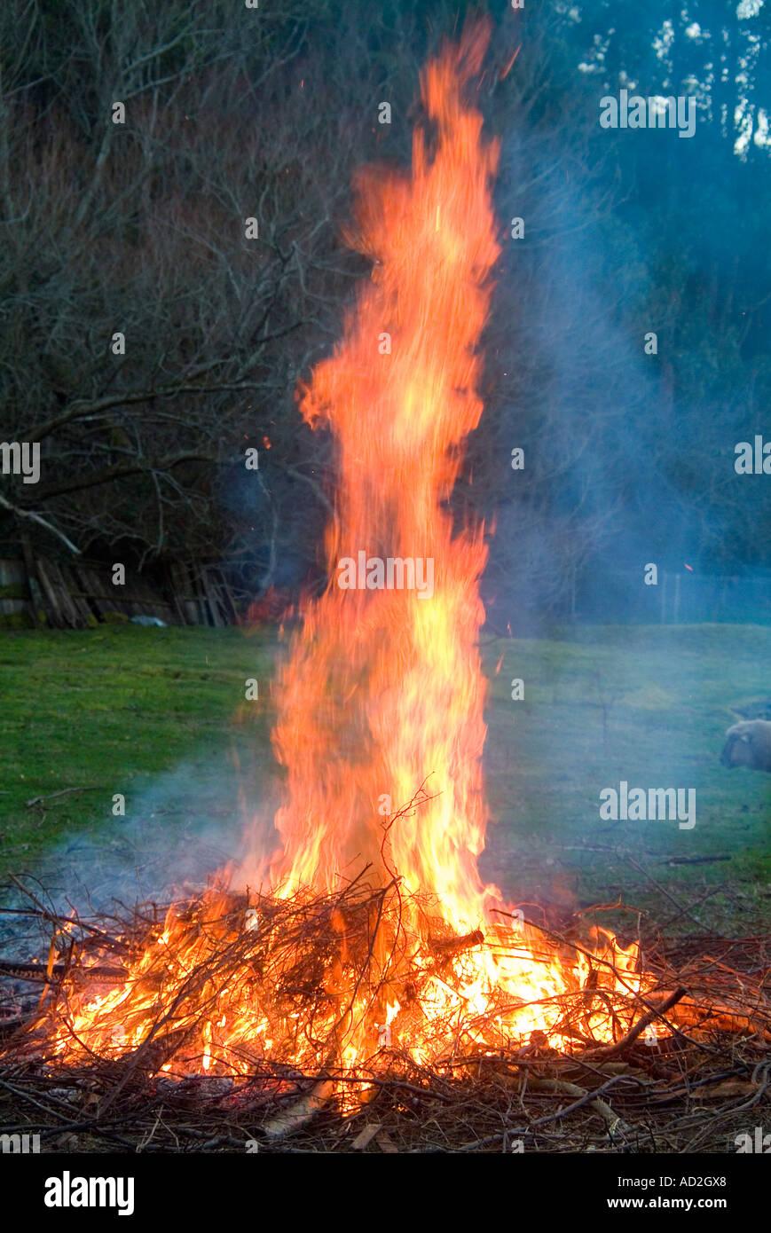 A backyard garden bonfire - Stock Image