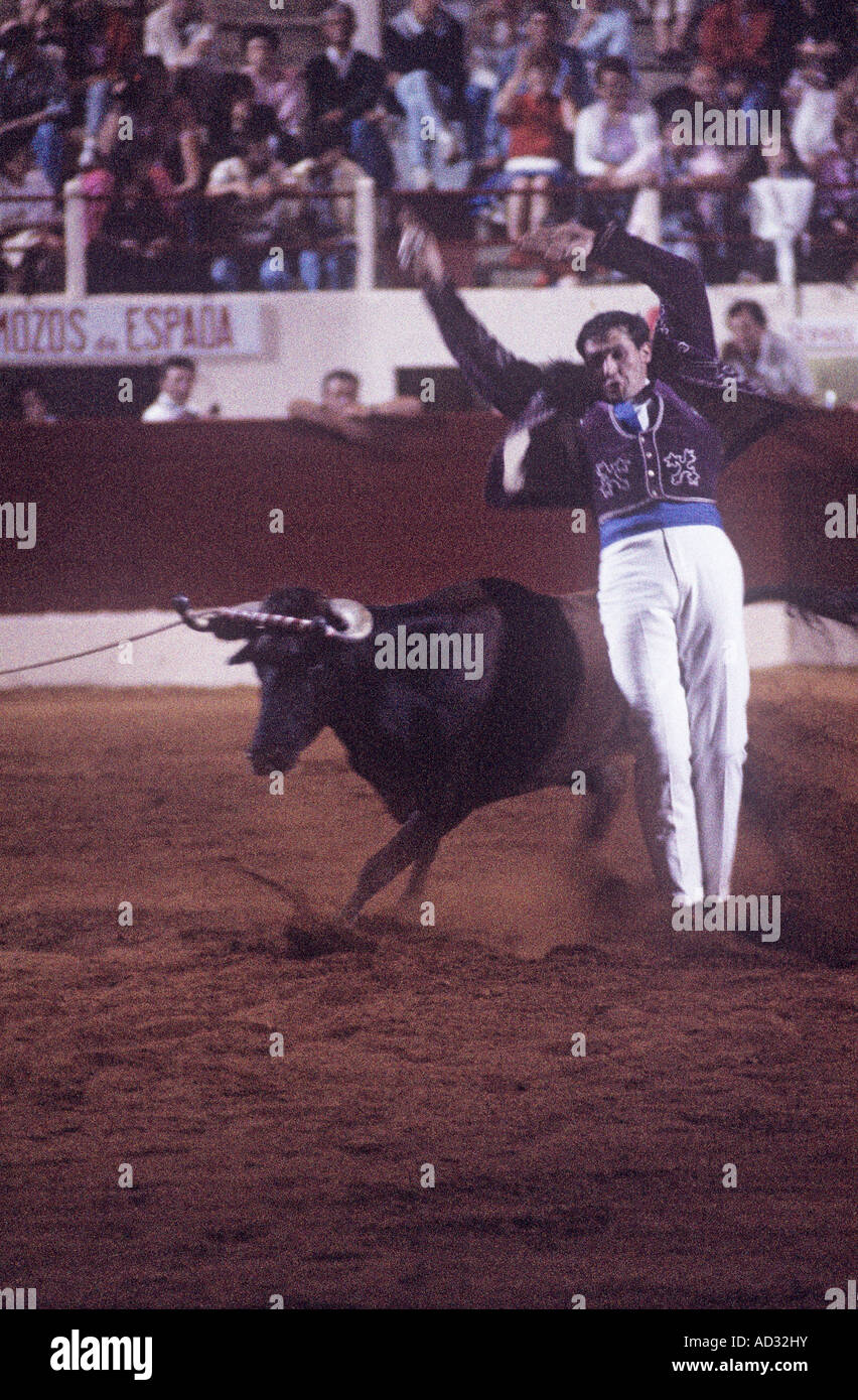 A night performance of Course Landaise, a form of bloodless bullfighting where young men in boleros face frisky Stock Photo