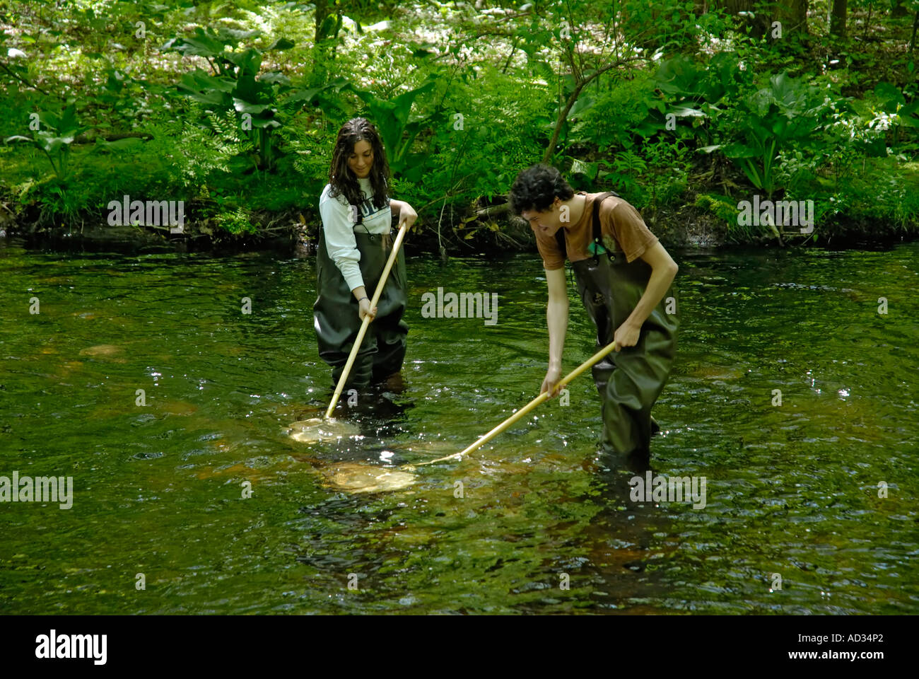 Teenagers high school students using net sampling river water for