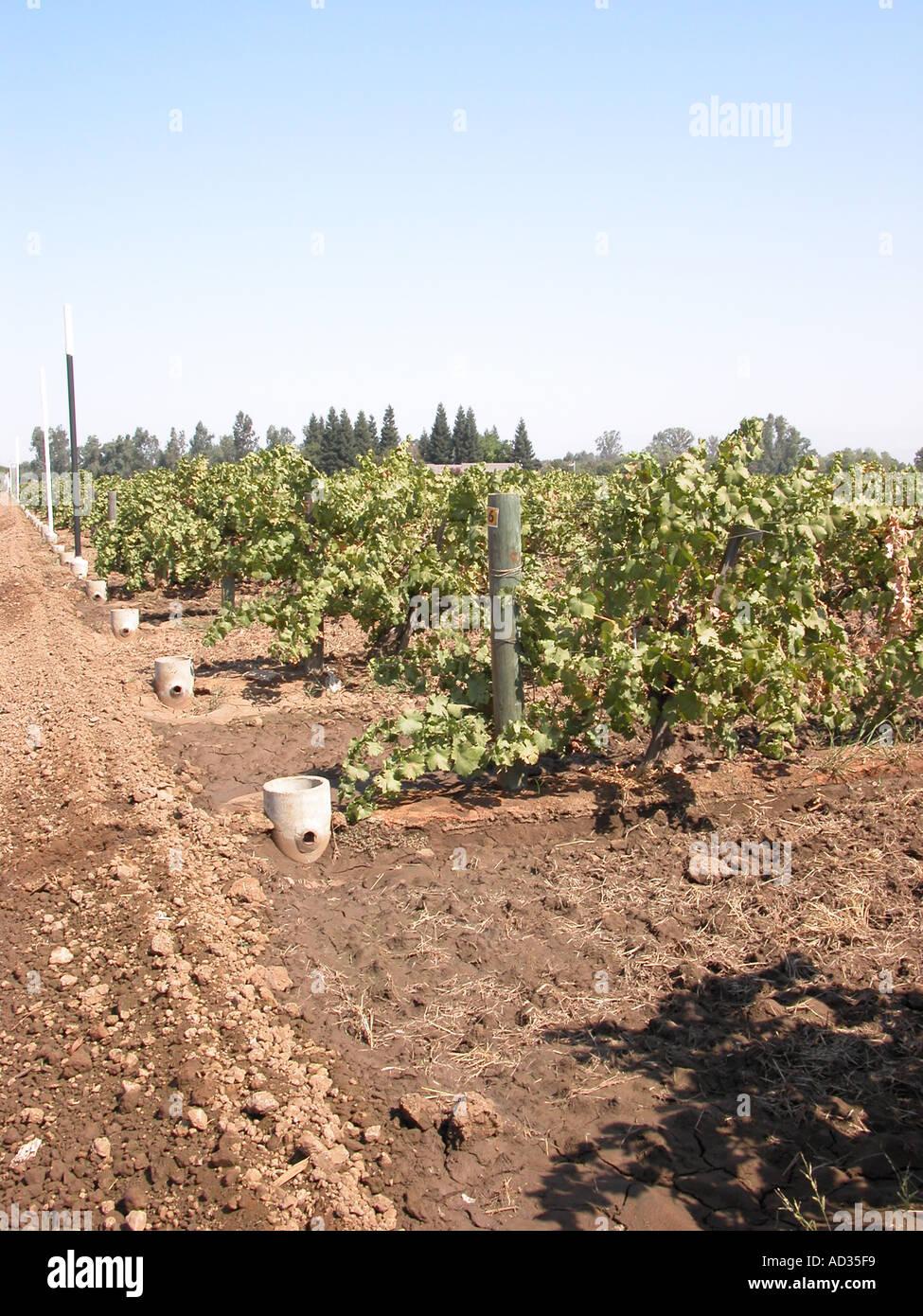 San Joaquin Valley Fresno Stock Photos & San Joaquin Valley Fresno ...
