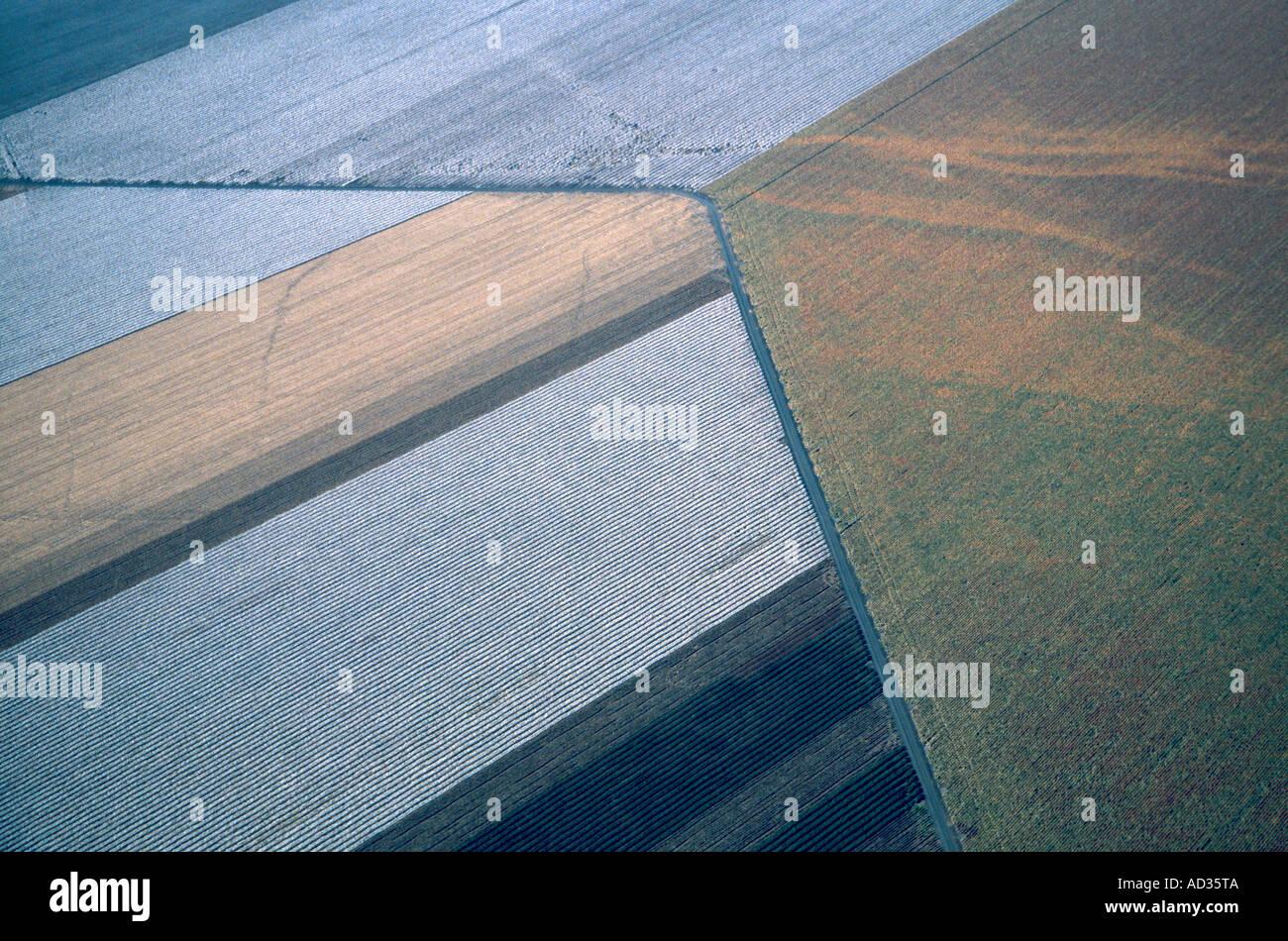 Farmland pattern - Stock Image