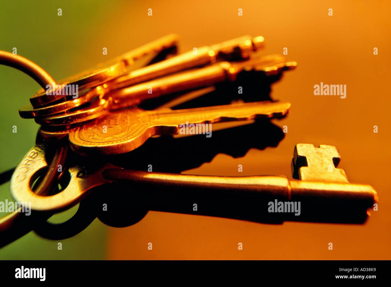 Studio illustration of a ring of keys representing accountability - Stock Image