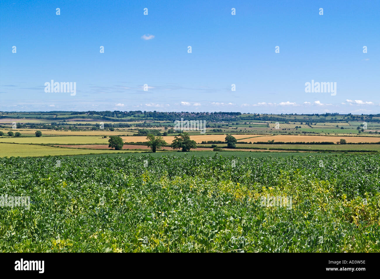 View across the Welland Valley in Rutland towards Northamptonshire and the village of Gretton England - Stock Image