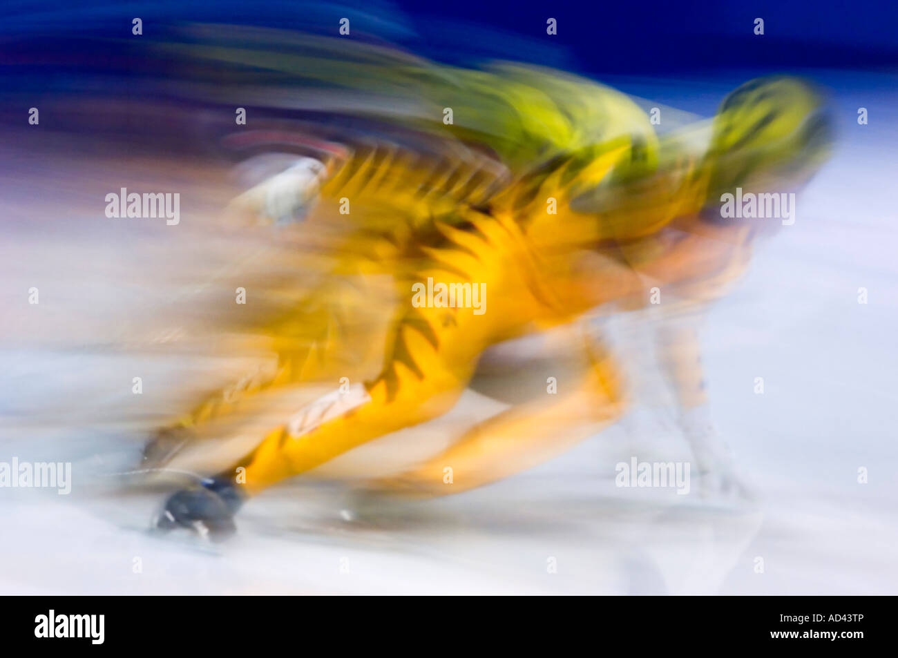 Canadian Short track speed skating competition 500 m sprint Greater Sudbury Ontario - Stock Image