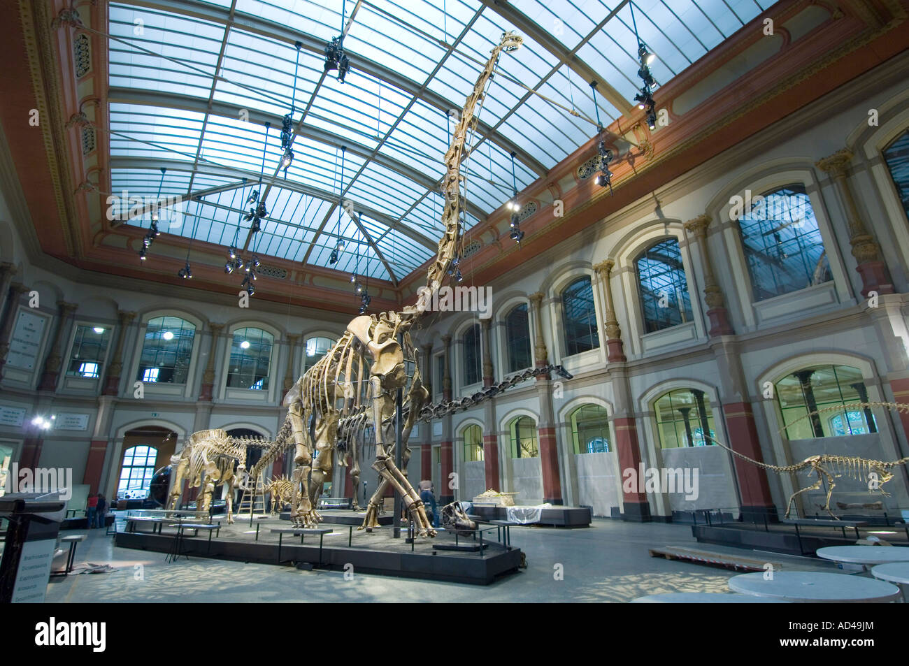 Natural History Museum Exhibition Halls