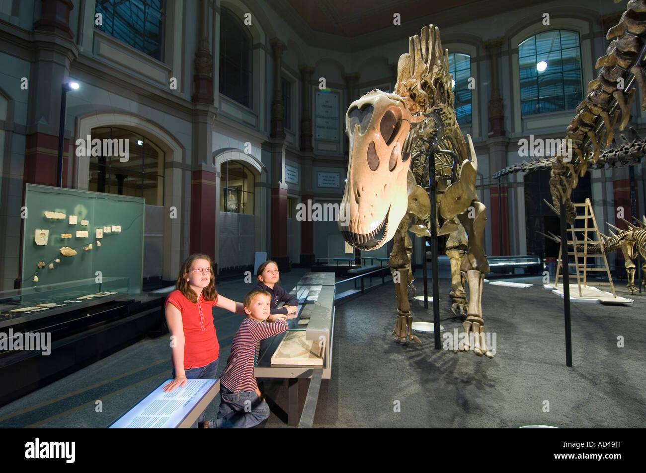 Dinosaur hall, children, Museum of Natural History, Berlin, Germany - Stock Image