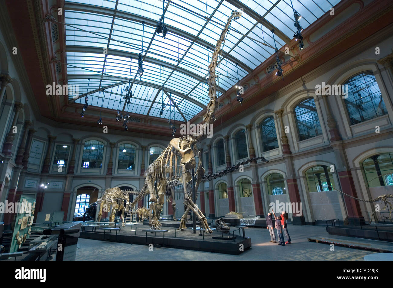Dinosaur hall, children, Museum of Natural History, Berlin, Germany - Stock Image