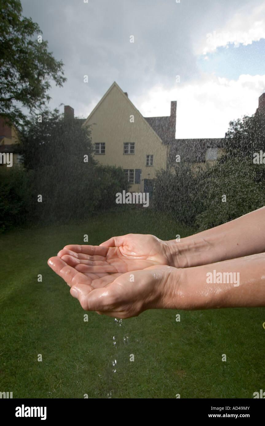 Rainwater Stock Photo