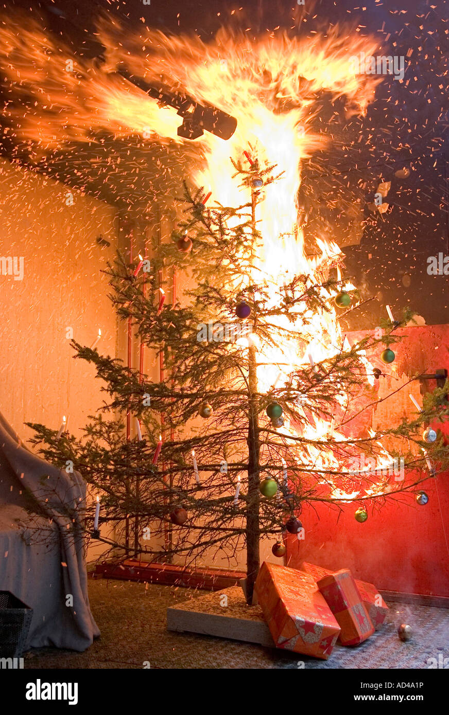Burning Christmas Tree.Burning Christmas Tree During A Demonstration Of A Fire