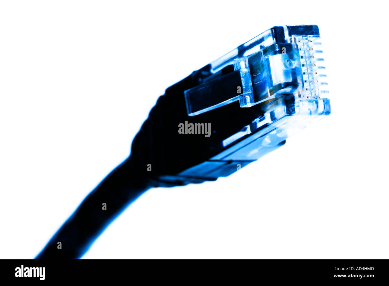 Network cable - Stock Image