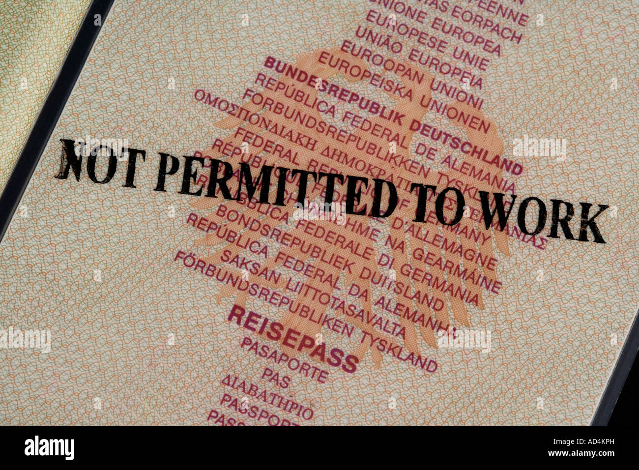 A German passport stamped 'Not Permitted To Work' - Stock Image