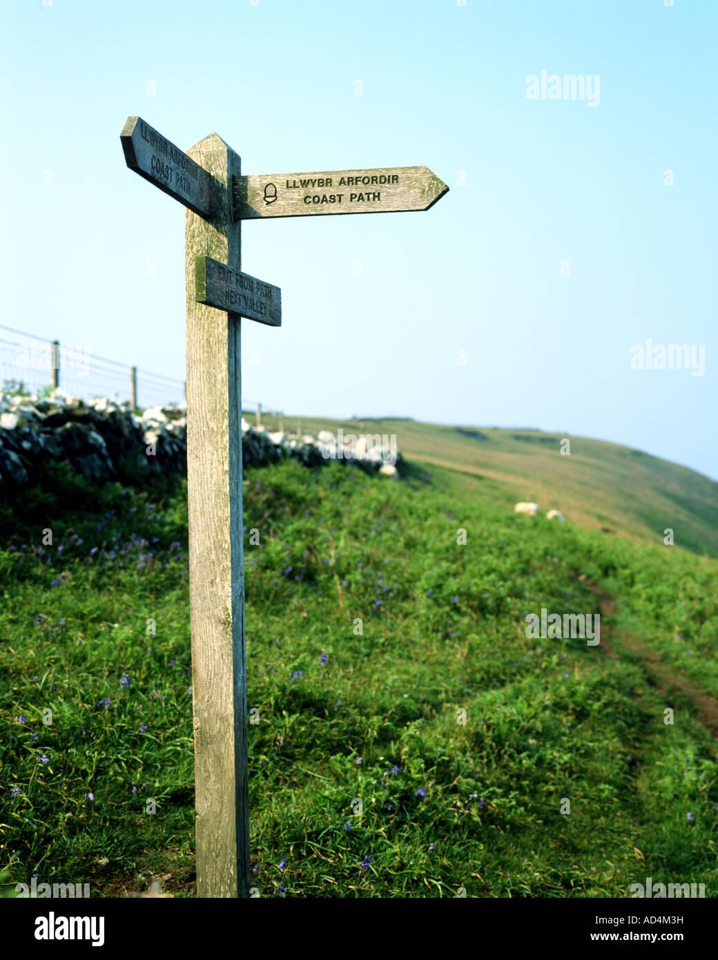 coastal path llwybr arfordir sign cemaes head north pembrokeshire - Stock Image