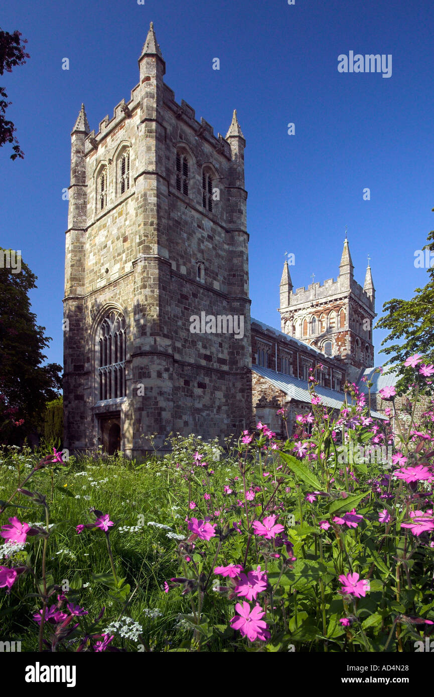 Wimborne Minster, Dorset, England, UK - Stock Image