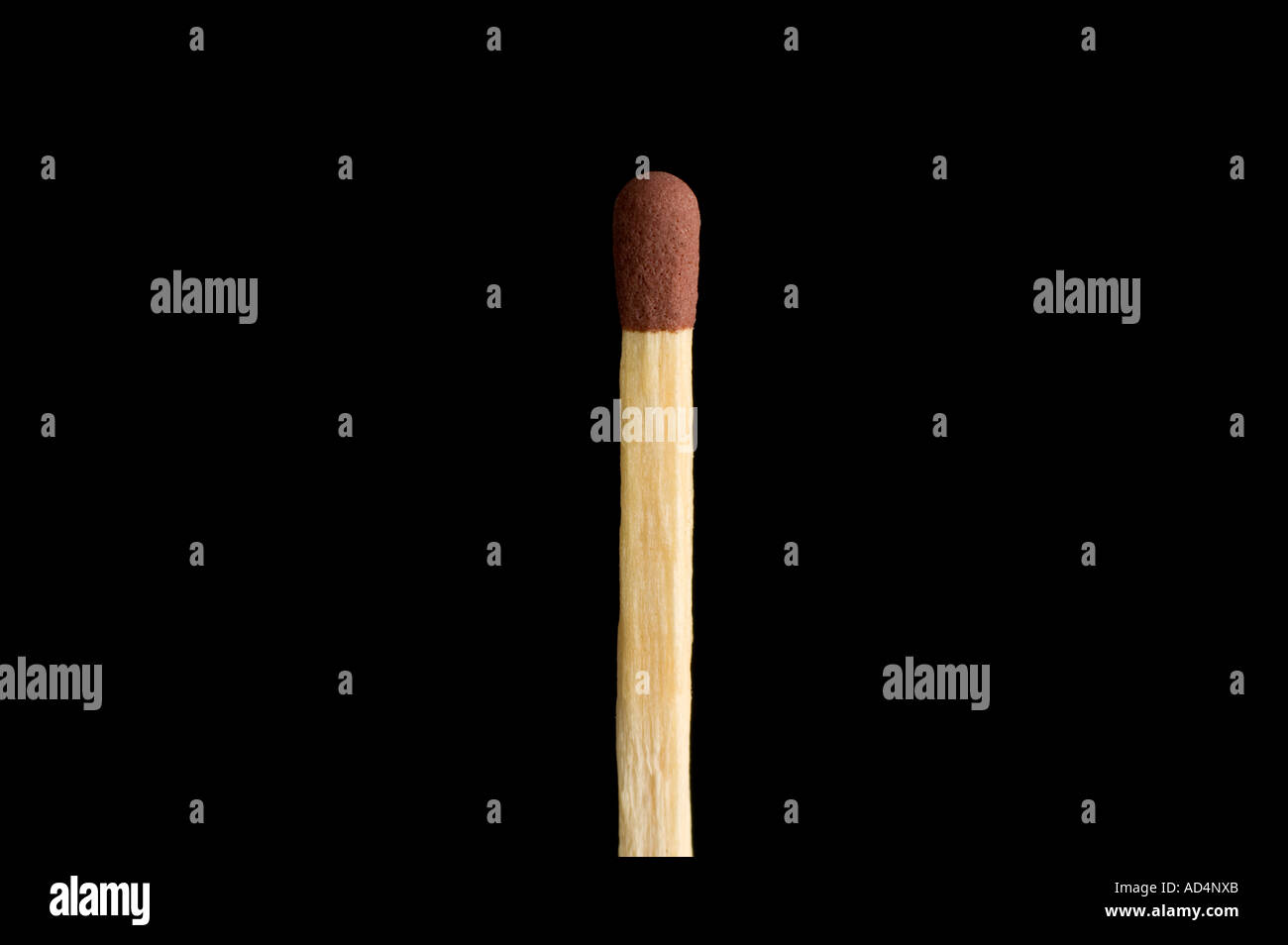 unlit match on a black background - Stock Image