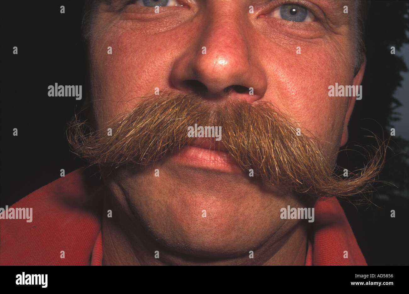 Man with mustache / mousatche - Stock Image