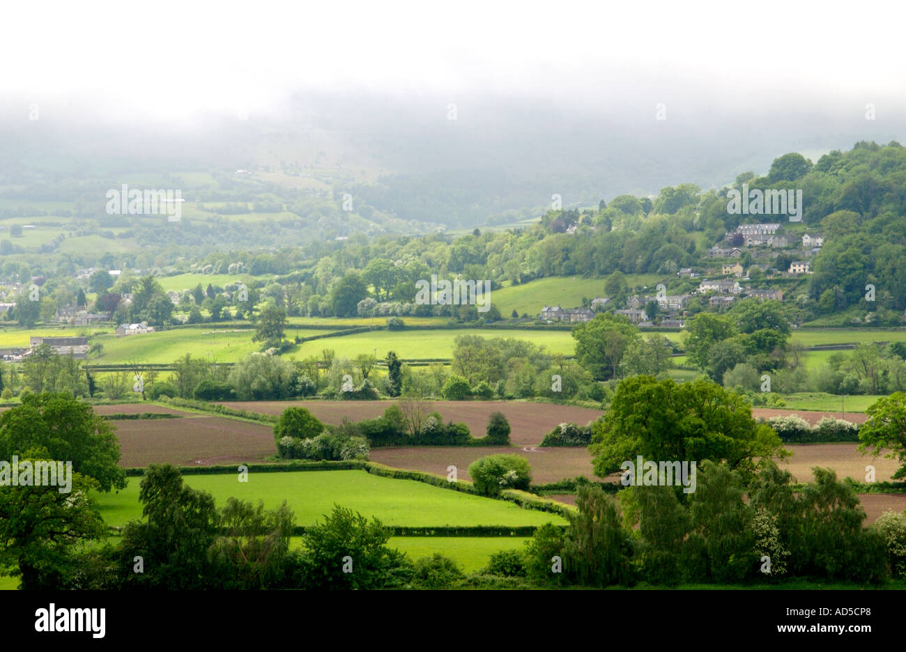 View over farmland with mist on the hills near Crickhowell Powys Wales UK - Stock Image