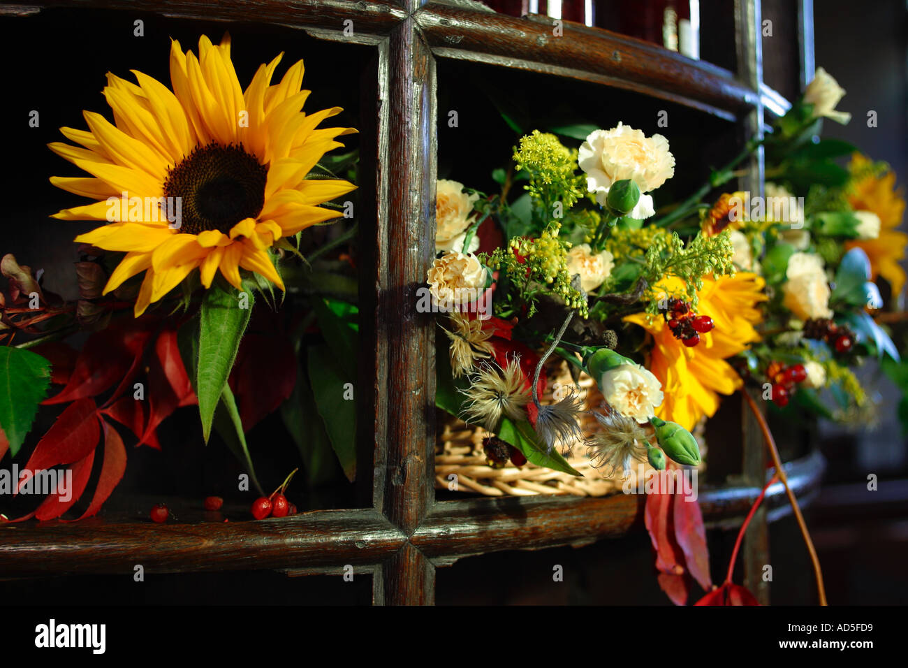 Autumn riches, flower display - Stock Image