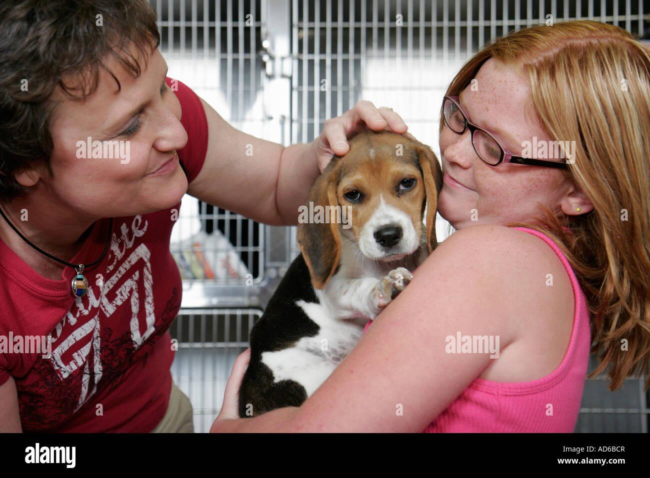 Newport News Virginia Peninsula SPCA pet adoption girl