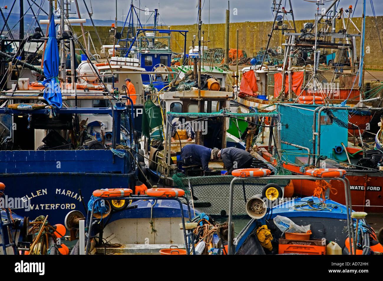 Helvick Fishing Harbour, Ring Gaeltacht (Gaelic Speaking Area) County Waterford, Ireland - Stock Image