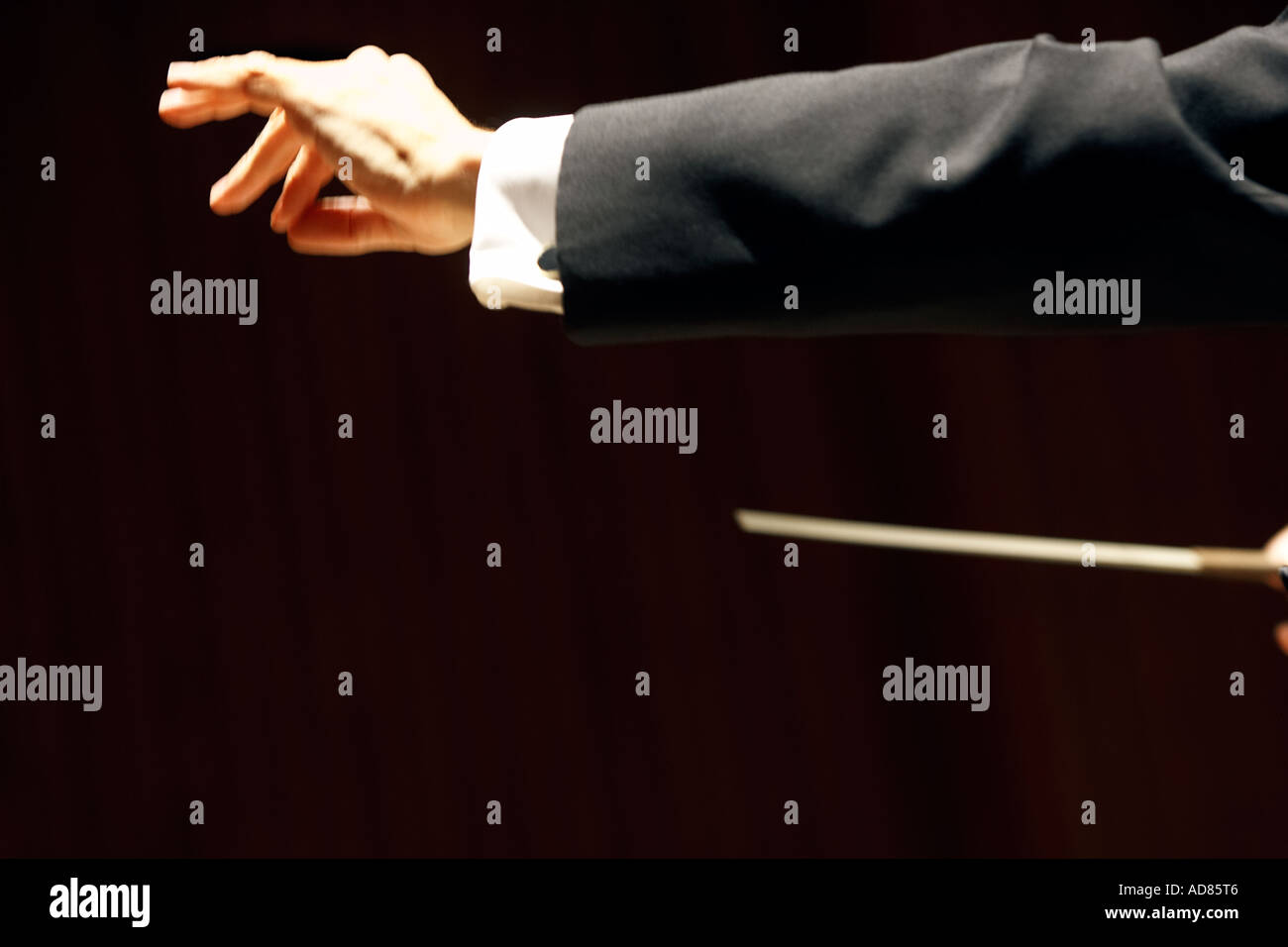 Orchestra conductors hand and bow art orchestra performance performing art performing arts performance art classical music - Stock Image