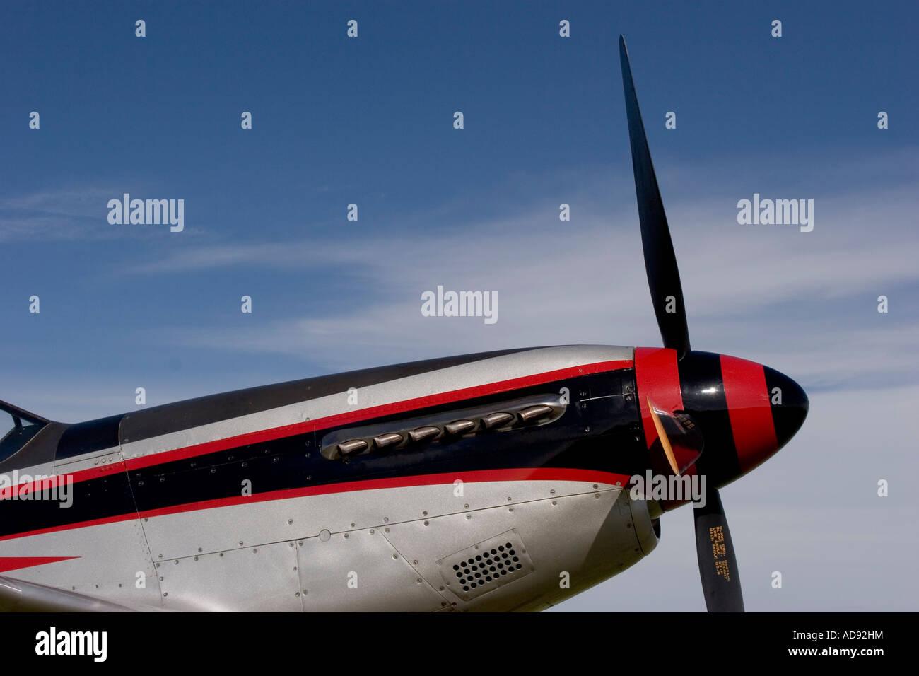 P 51D Mustang - Stock Image