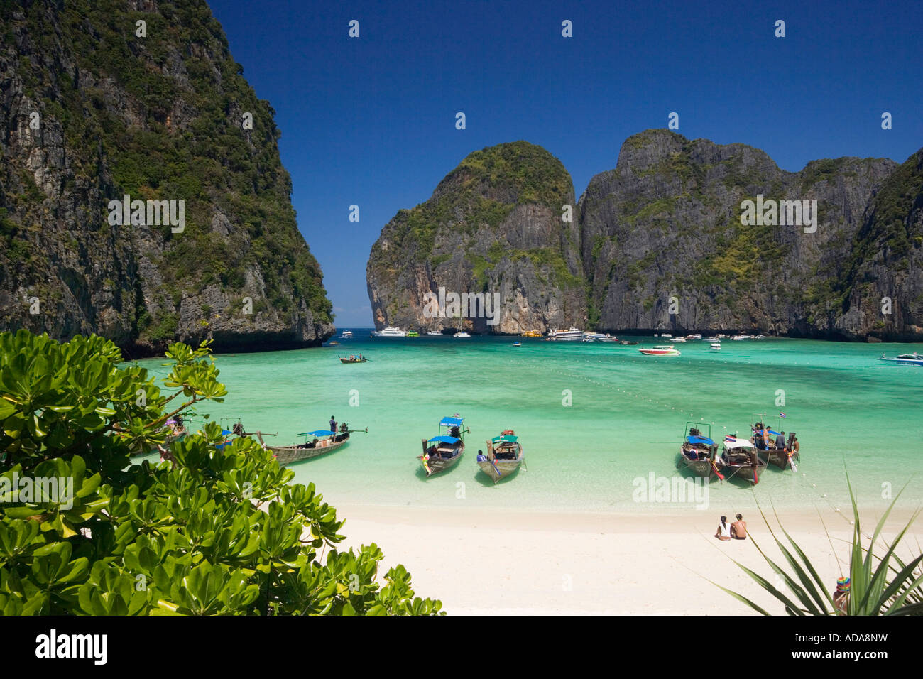 Paradise Resort Phi Phi Island