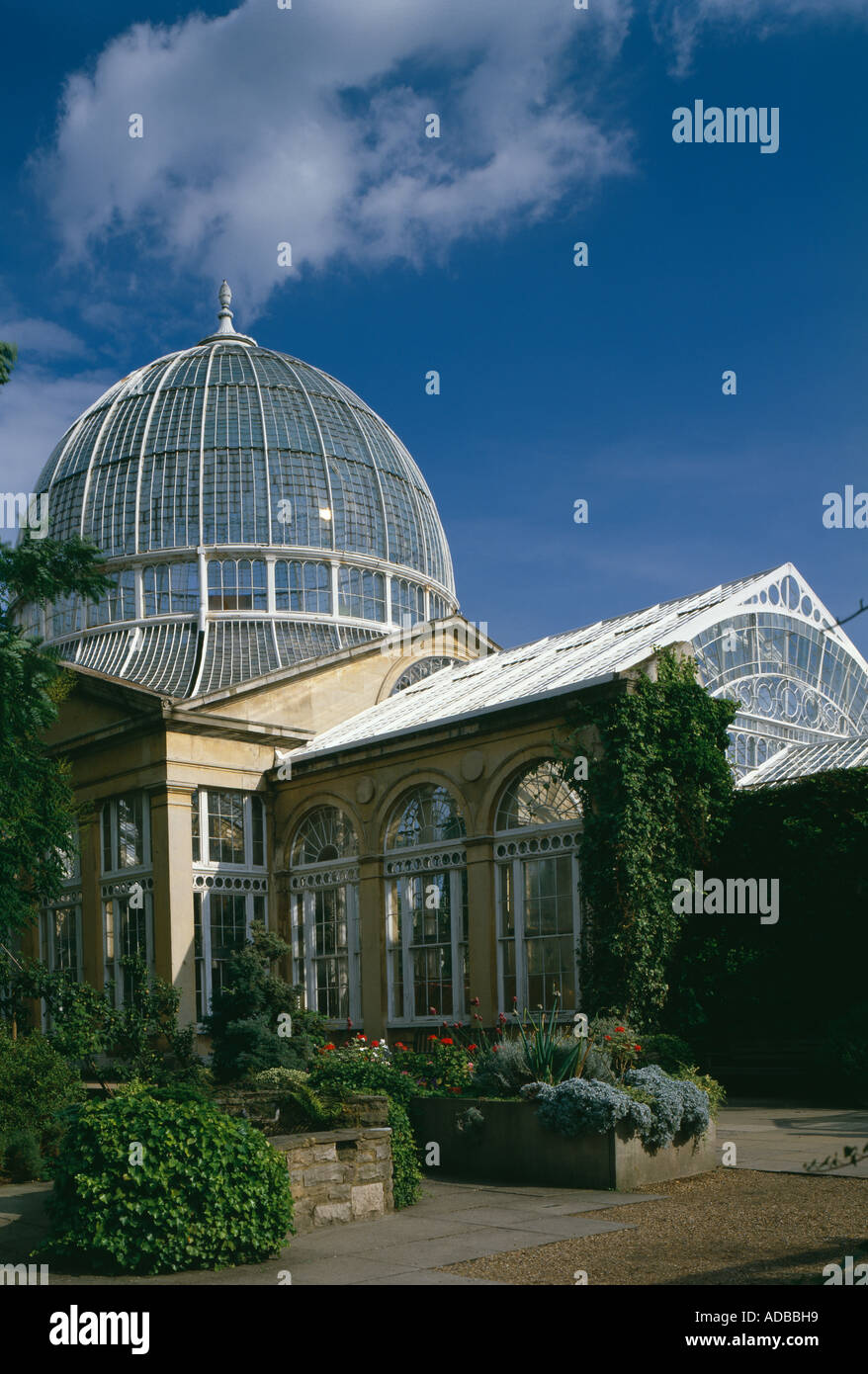 Syon House, Isleworth, Middlesex, England,1760 - 1769. The Great Conservatory, in gun-metal and Bath stone, 1826. - Stock Image