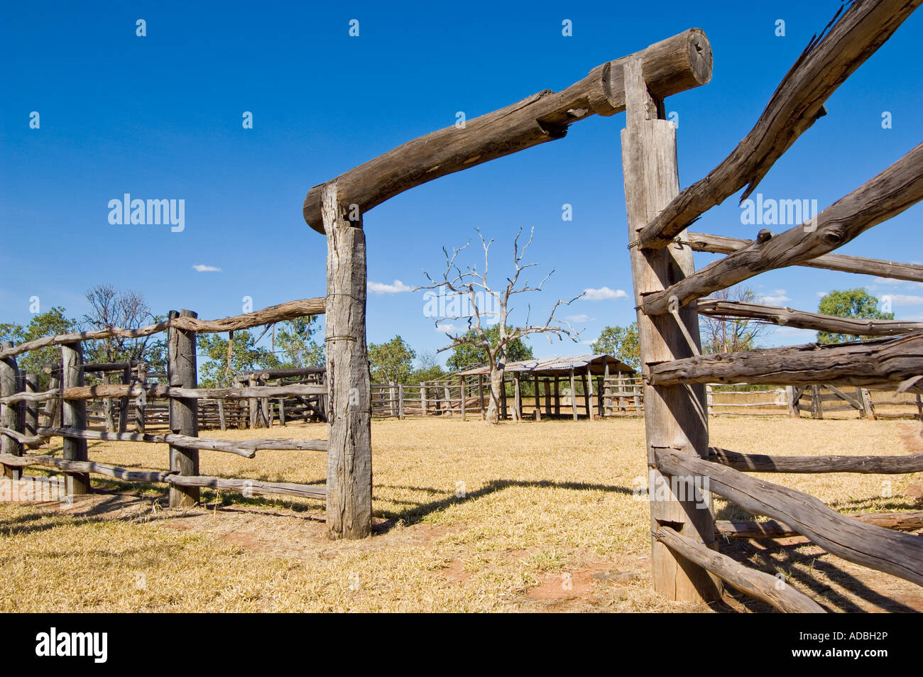 Wooden Cattle Yards Stock Photos Wooden Cattle Yards Stock Images