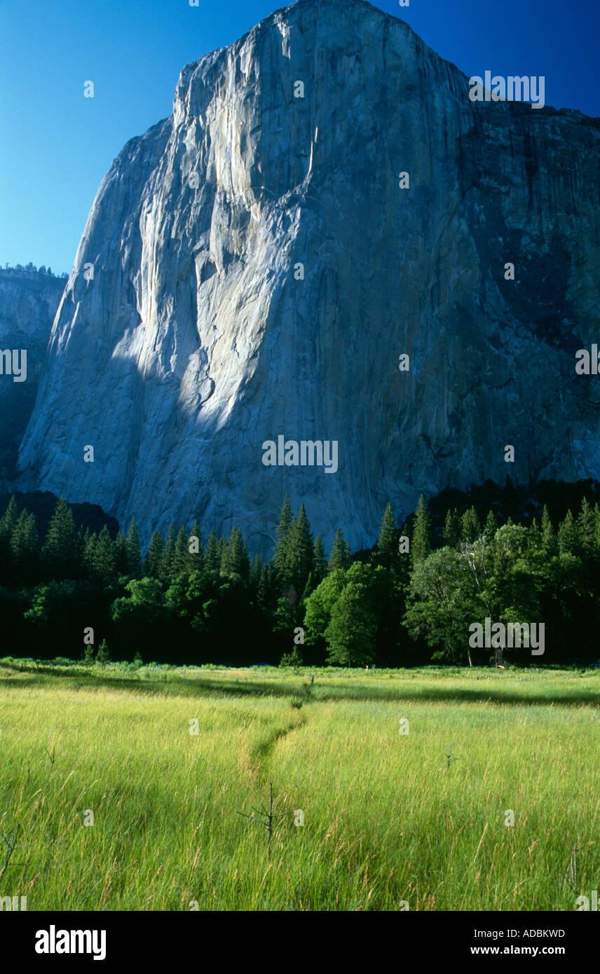 El Capitan iconic monolith in evening light Yosemite National Park Valley Sierra Nevada California USA Stock Photo