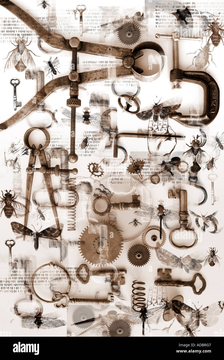 Small objects, bugs, keys and tools create a pattern on a white background. Science discovery and mystery concept - Stock Image