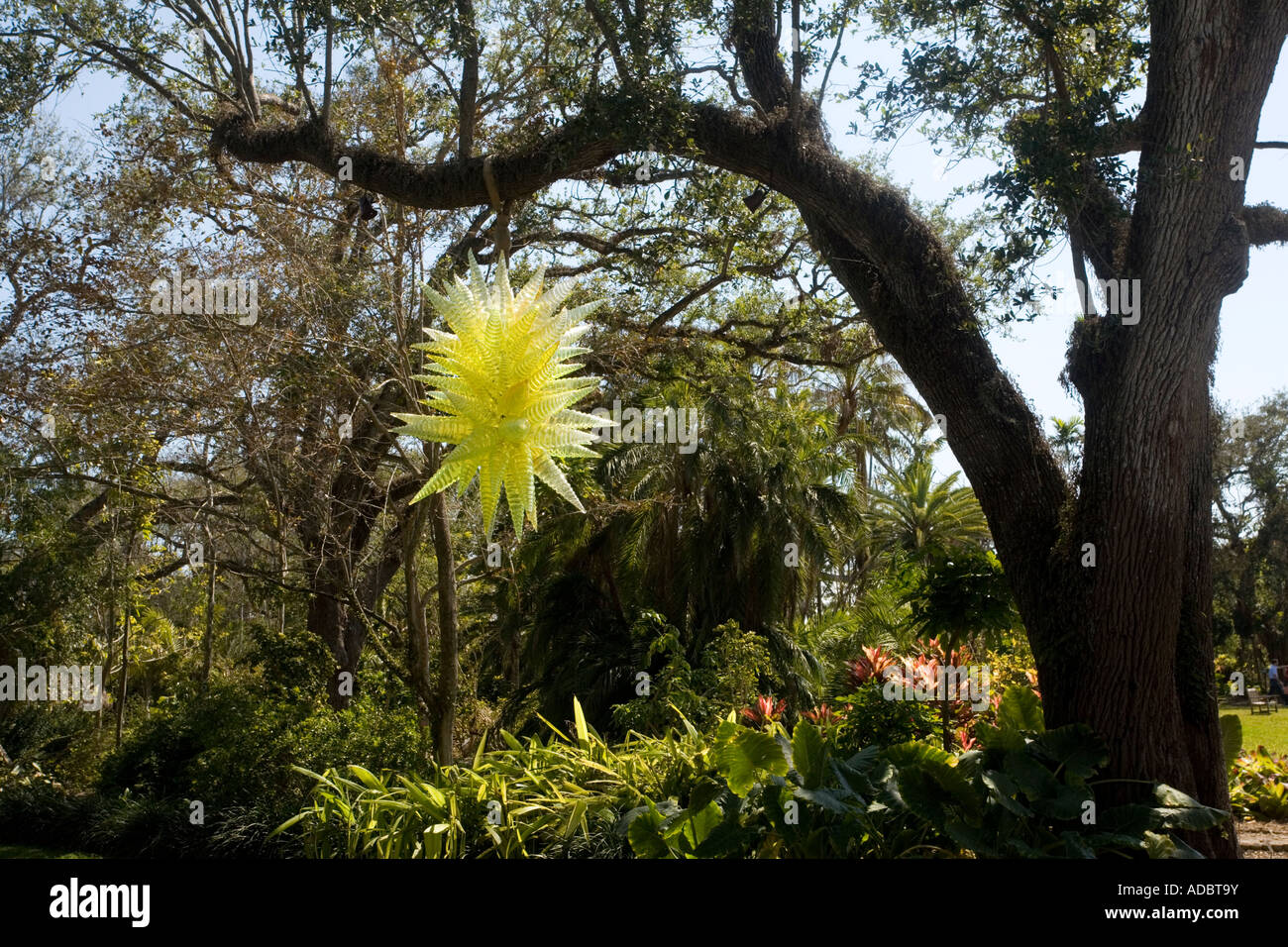 Fairchild Botanic Garden Miami Stock Photos & Fairchild Botanic ...