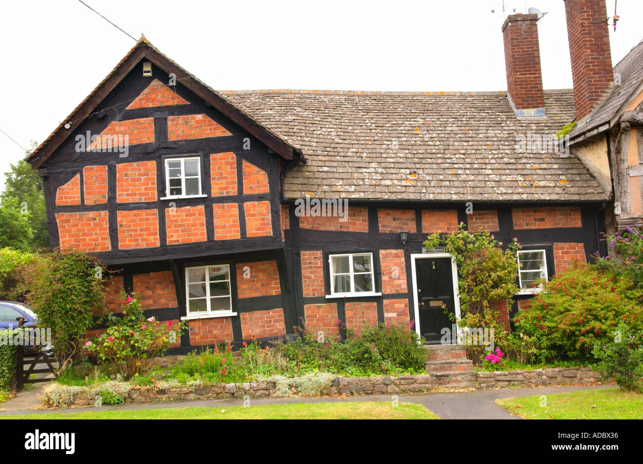 Timber framed medieval 15th century house with brick infill panels at Pembridge Herefordshire England UK - Stock Image