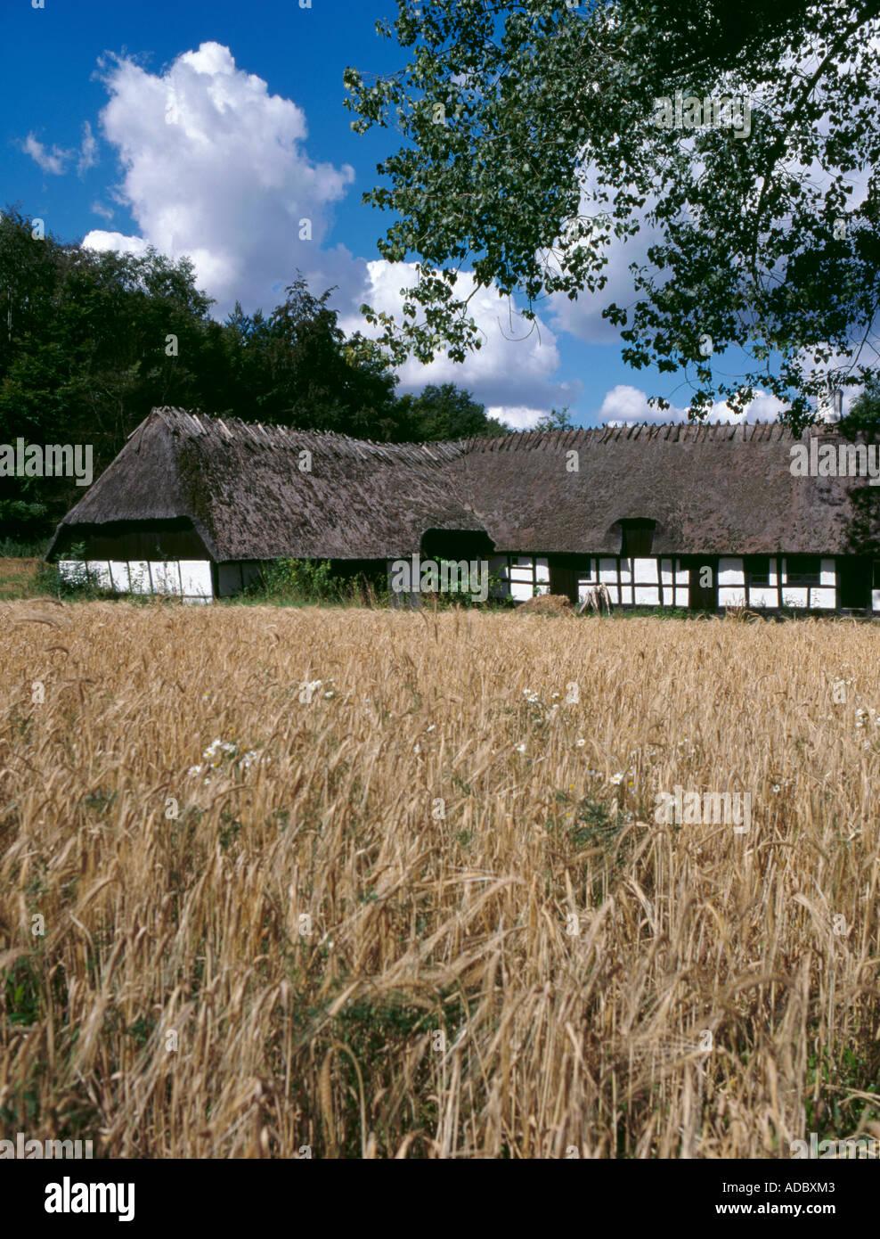 Hule Farm, Den Fynske Landsby, Funnen village, south of Odense, Fyn (Funen), Denmark. Stock Photo