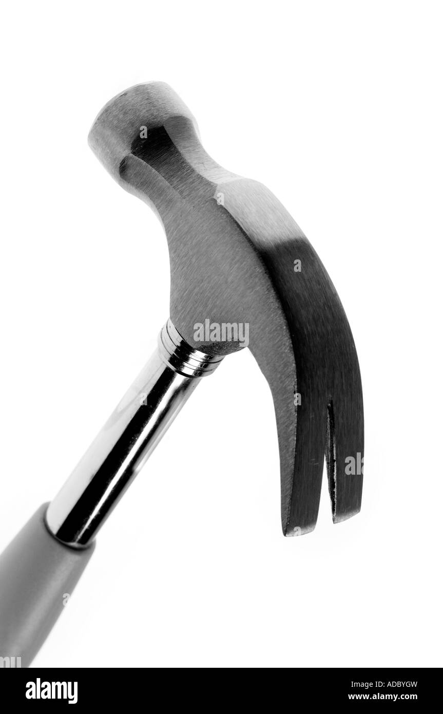close up of a claw hammer on a white background - Stock Image
