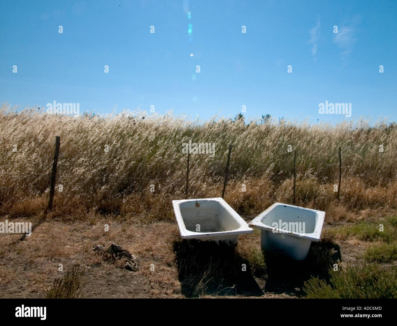 two old bath tubs with drinking water for horses lie in a sunny ...