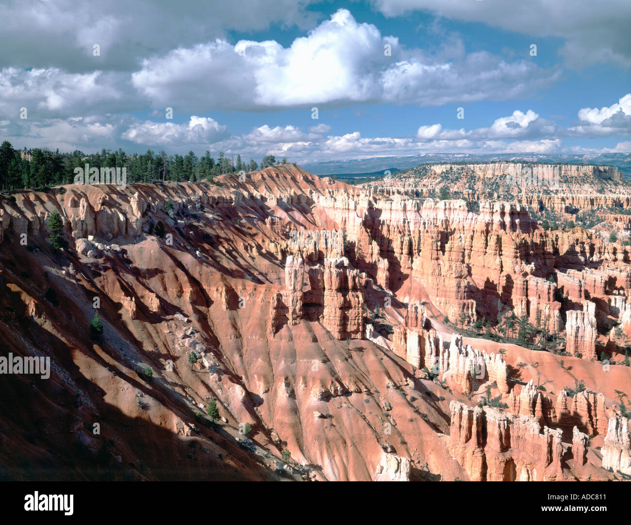 Bryce Canyon National Park in Utah showing the bright red earthy colors formed in spires fins arches and mazes - Stock Image