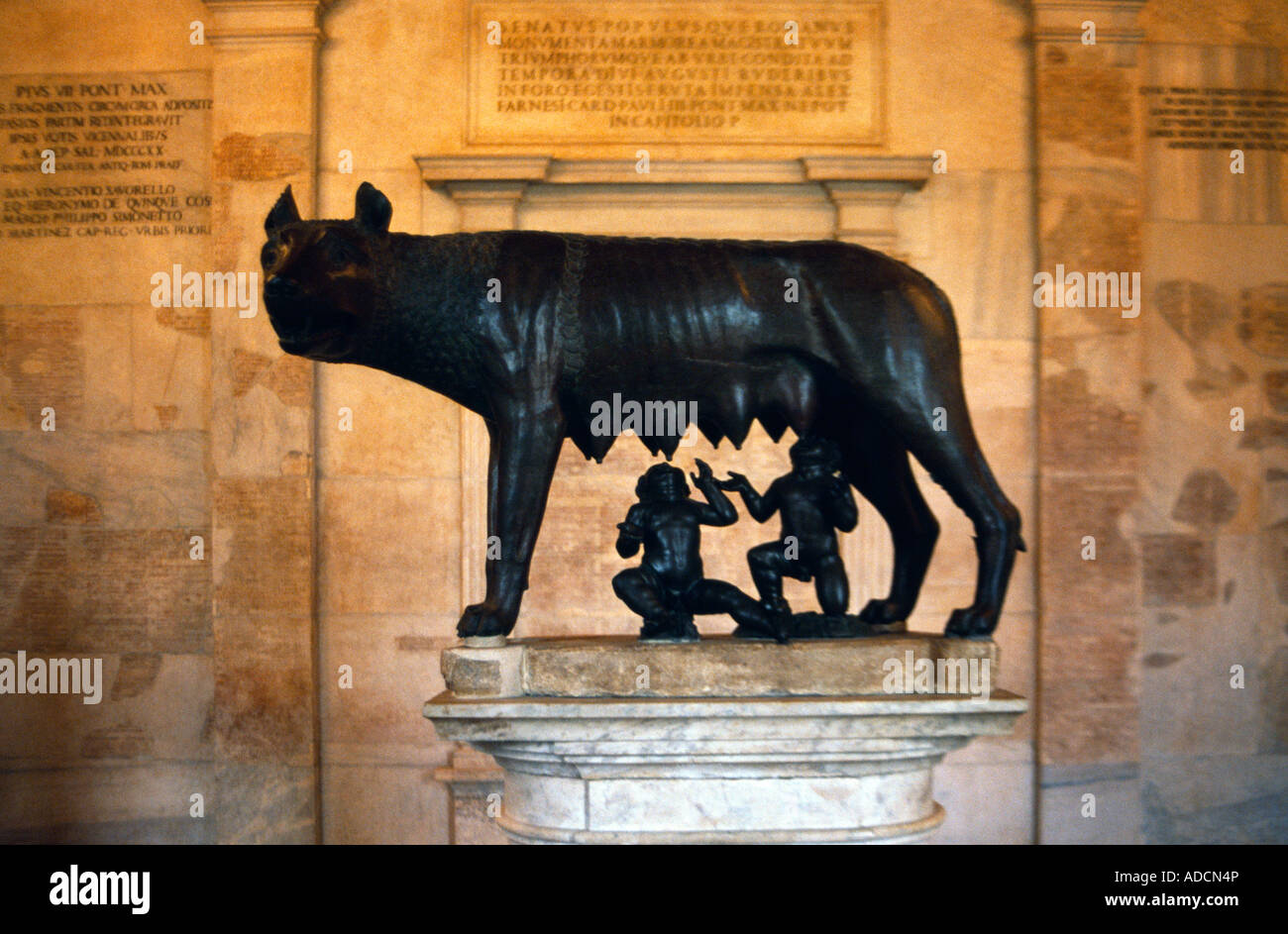 Rome Italy Capitoline Museum Capitoline She-wolf - Stock Image