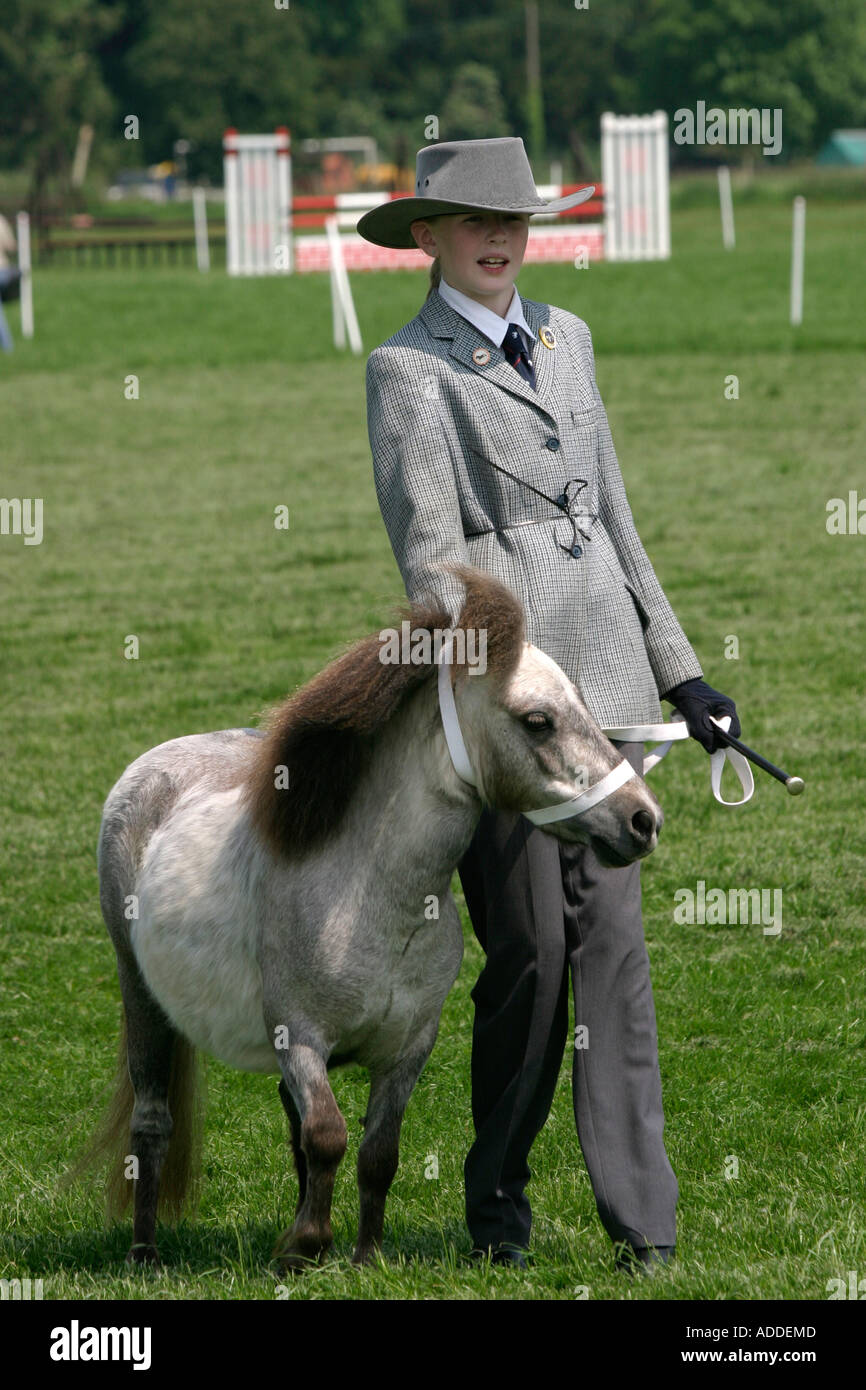 A Shetland pony and its young companion at the South Oxfordshire Riding Club's Open Show - Stock Image