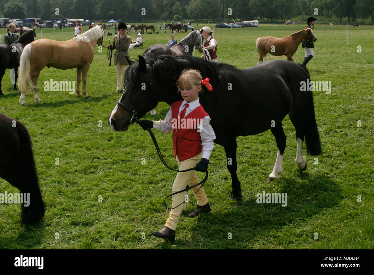 A young girl in red  walks with her pony during a competition at the South Oxfordshire Riding Club's Open Show - Stock Image