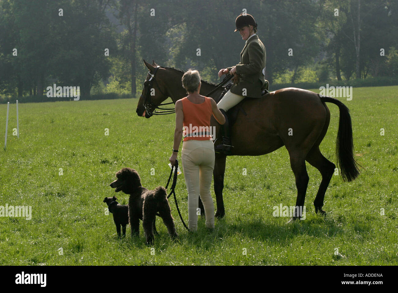 Participants talk at the end of the South Oxfordshire Riding Club's Open Show - Stock Image