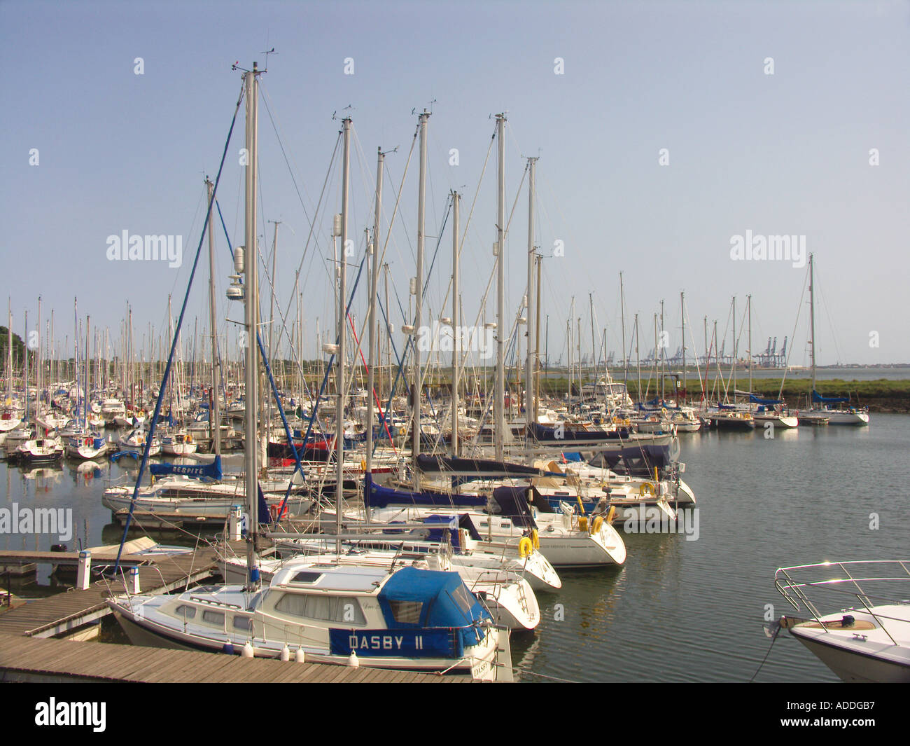 Levington marina River Orwell Suffolk England Stock Photo: 4369590 ...
