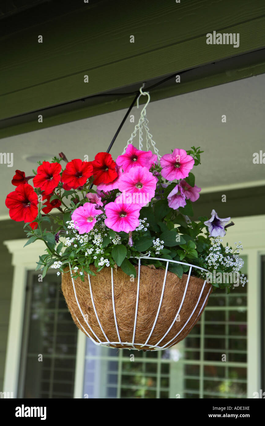 Hanging baskets on front porch of home - Stock Image